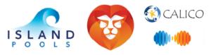 Стили-логотипов-контуры-движение